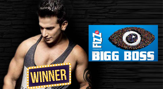 Bigg Boss Winner Season 9 (2016) : Prince Narula