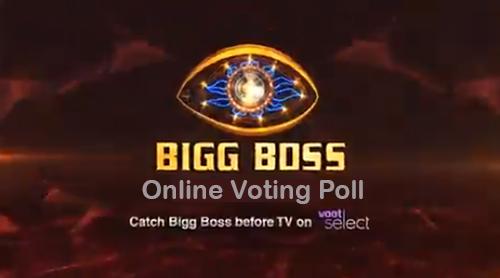 bigg boss 14 voting