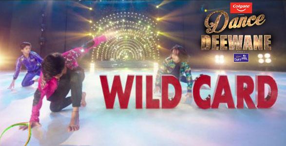 DD Wild Card